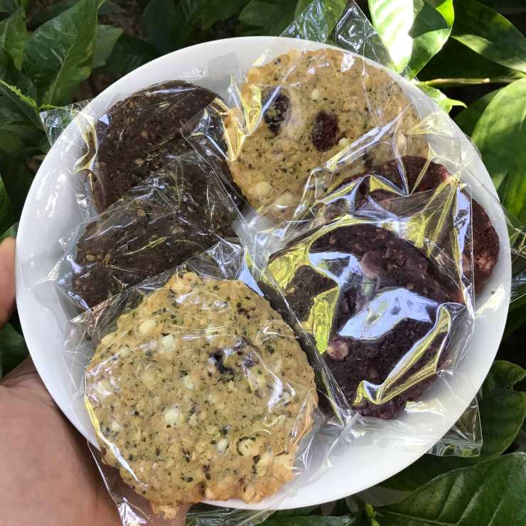 Delicious Lactation Cookies by Mama Bear Treats