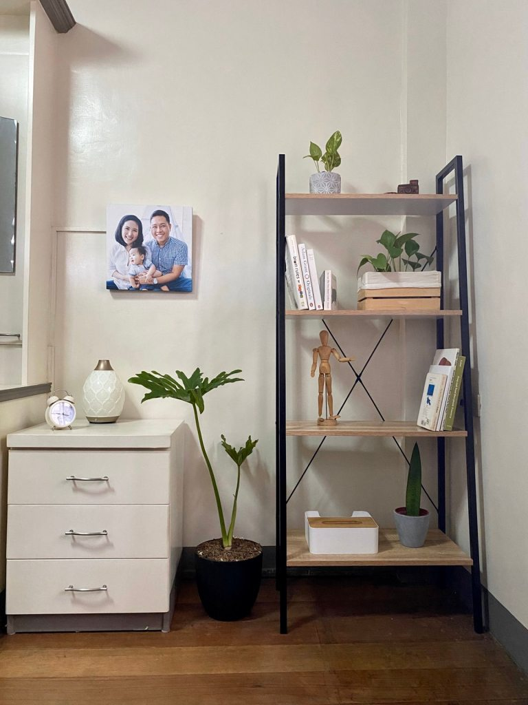 Minimalist shelf with plants and white books